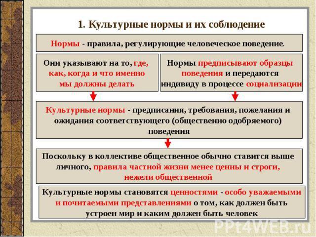 1. Культурные нормы и их соблюдение