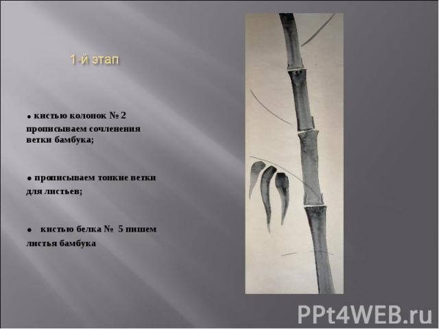 . кистью колонок № 2 прописываем сочленения ветки бамбука; . прописываем тонкие ветки для листьев; . кистью белка № 5 пишем листья бамбука