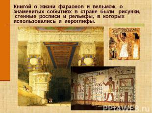Книгой о жизни фараонов и вельмож, о знаменитых событиях в стране были рисунки,