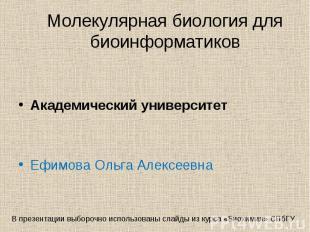 Академический университет Ефимова Ольга Алексеевна
