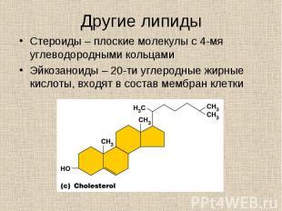 Стероиды – плоские молекулы с 4-мя углеводородными кольцами Стероиды – плоские м