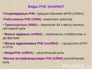 Виды РНК ЭУКАРИОТ