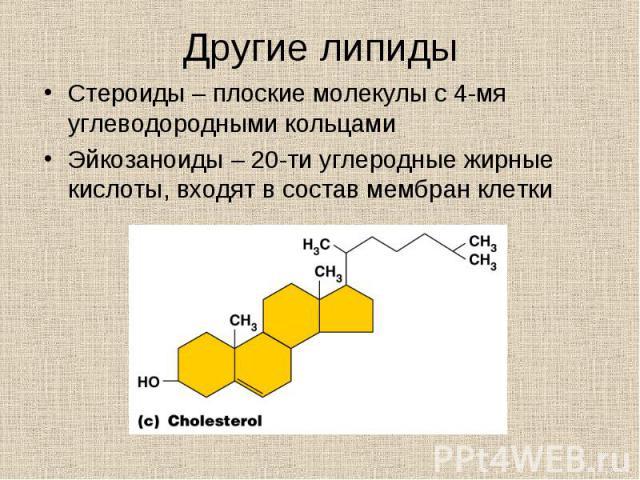 Стероиды – плоские молекулы с 4-мя углеводородными кольцами Стероиды – плоские молекулы с 4-мя углеводородными кольцами Эйкозаноиды – 20-ти углеродные жирные кислоты, входят в состав мембран клетки