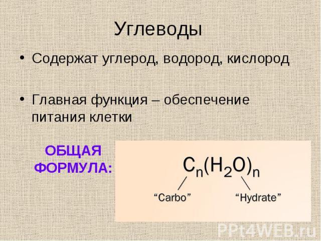 Содержат углерод, водород, кислород Содержат углерод, водород, кислород Главная функция – обеспечение питания клетки