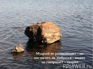 Мудрый не размышляет – он постигает, не любуется – видит, Мудрый не размышляет –
