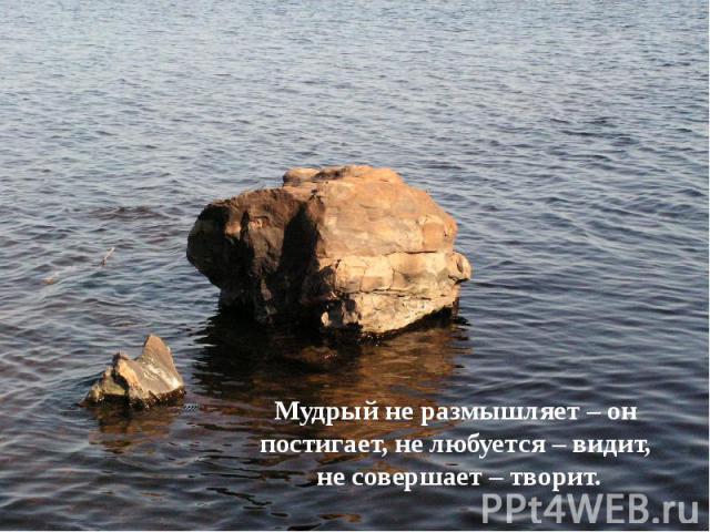 Мудрый не размышляет – он постигает, не любуется – видит, Мудрый не размышляет – он постигает, не любуется – видит, не совершает – творит.