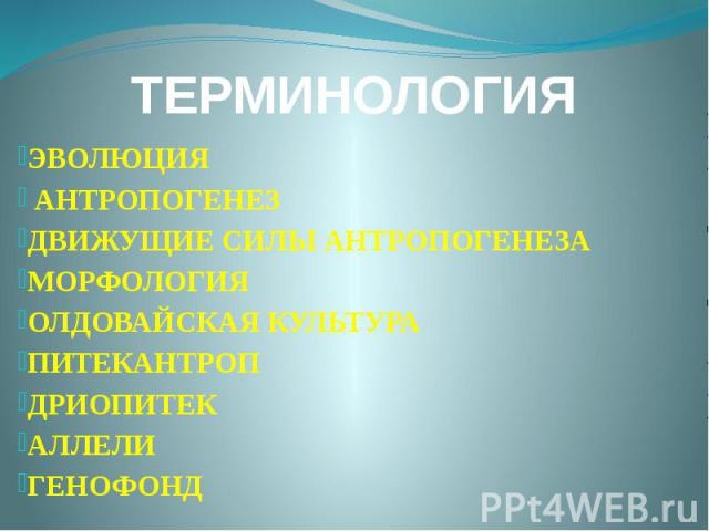 ТЕРМИНОЛОГИЯ ЭВОЛЮЦИЯ АНТРОПОГЕНЕЗ ДВИЖУЩИЕ СИЛЫ АНТРОПОГЕНЕЗА МОРФОЛОГИЯ ОЛДОВАЙСКАЯ КУЛЬТУРА ПИТЕКАНТРОП ДРИОПИТЕК АЛЛЕЛИ ГЕНОФОНД