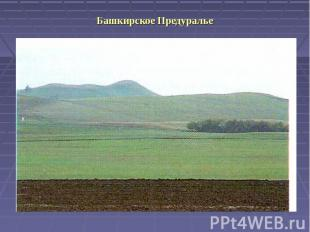 Башкирское Предуралье