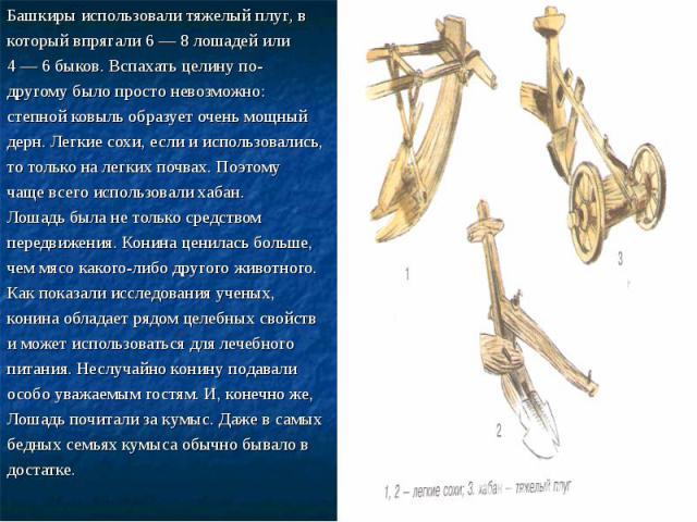 Башкиры использовали тяжелый плуг, в Башкиры использовали тяжелый плуг, в который впрягали 6 — 8 лошадей или 4 — 6 быков. Вспахать целину по- другому было просто невозможно: степной ковыль образует очень мощный дерн. Легкие сохи, если и использовали…