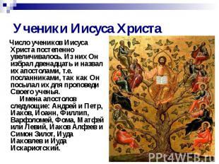 Ученики Иисуса Христа Число учеников Иисуса Христа постепенно увеличивалось. Из
