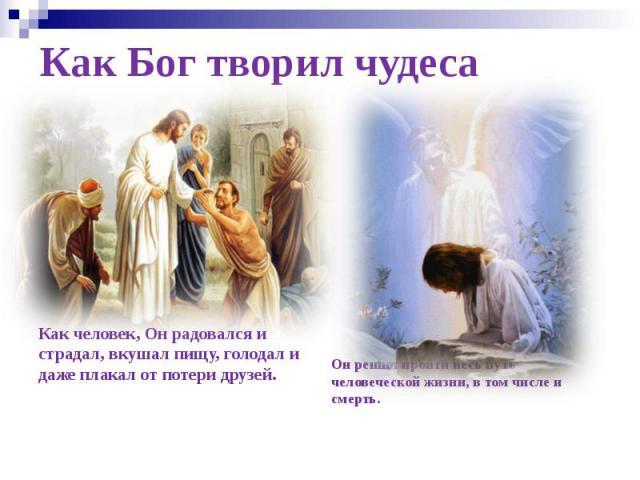 Как Бог творил чудеса Как человек, Он радовался и страдал, вкушал пищу, голодал и даже плакал от потери друзей.