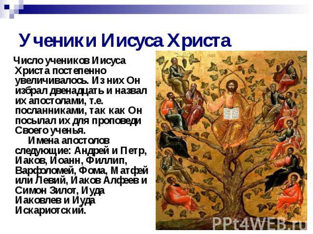 Ученики Иисуса Христа Число учеников Иисуса Христа постепенно увеличивалось. Из них Он избрал двенадцать и назвал их апостолами, т.е. посланниками, так как Он посылал их для проповеди Своего ученья.  Имена апостолов следующие…