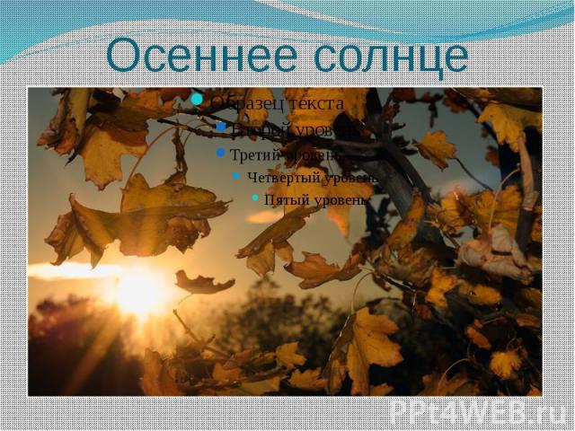 Осеннее солнце