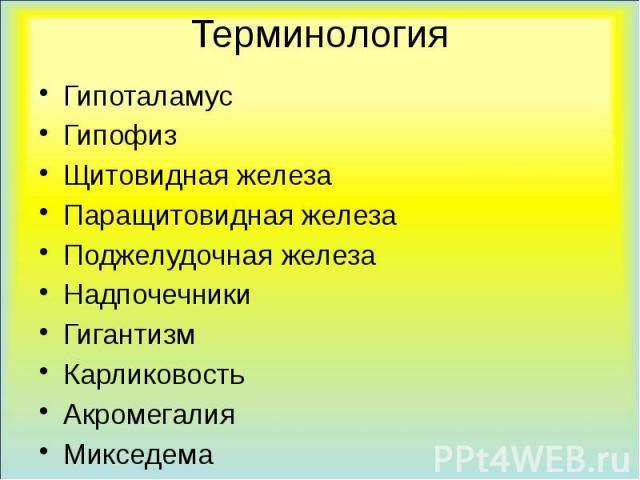 Терминология Гипоталамус Гипофиз Щитовидная железа Паращитовидная железа Поджелудочная железа Надпочечники Гигантизм Карликовость Акромегалия Микседема