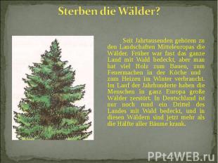 Seit Jahrtausenden gehören zu den Landschaften Mitteleuropas die Wälder. Früher