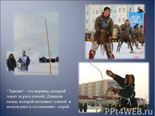 """""""Тынзян"""" - это веревка, которой ловят за рога оленей. Длинная палка, которой пог"""