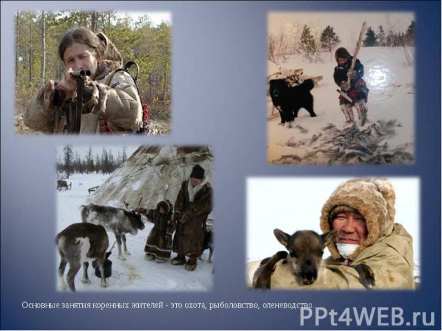 Основные занятия коренных жителей - это охота, рыболовство, оленеводство. Основные занятия коренных жителей - это охота, рыболовство, оленеводство.