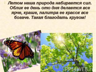 Летом наша природа набирается сил. Облик ее день ото дня делается все ярче, краш