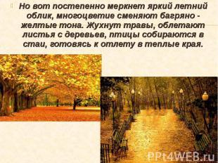 Но вот постепенно меркнет яркий летний облик, многоцветие сменяют багряно - желт