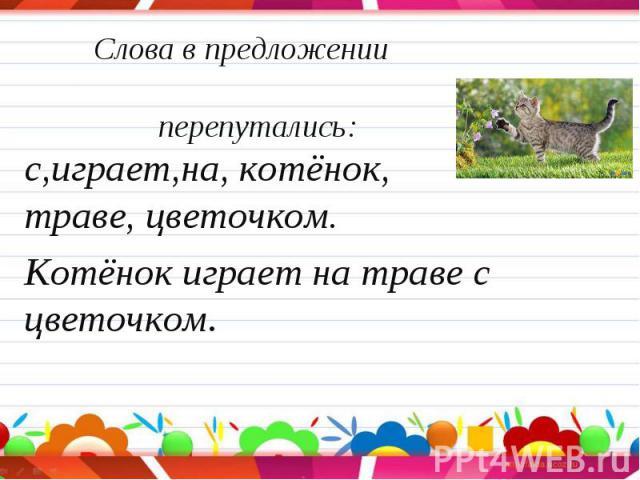 с,играет,на, котёнок, траве, цветочком. с,играет,на, котёнок, траве, цветочком. Котёнок играет на траве с цветочком.