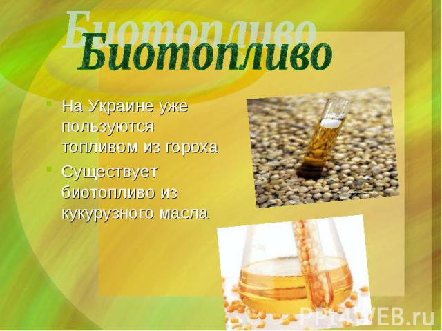 На Украине уже пользуются топливом из гороха Существует биотопливо из кукурузного масла