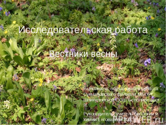 Исследовательская работа Вестники весны
