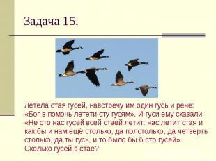 Задача 15. Летела стая гусей, навстречу им один гусь и рече: «Бог в помочь летет