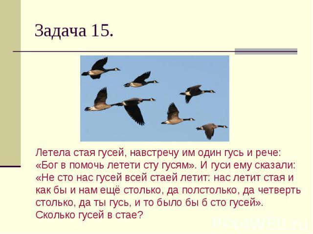 Задача 15. Летела стая гусей, навстречу им один гусь и рече: «Бог в помочь летети сту гусям». И гуси ему сказали: «Не сто нас гусей всей стаей летит: нас летит стая и как бы и нам ещё столько, да полстолько, да четверть столько, да ты гусь, и то был…