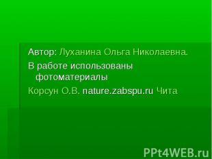 Автор: Луханина Ольга Николаевна. В работе использованы фотоматериалы Корсун О.В