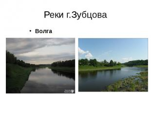 Реки г.Зубцова Волга