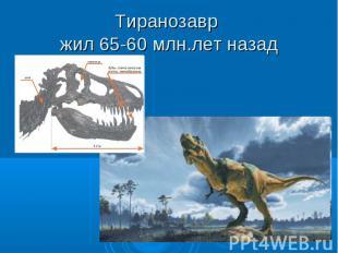 Тиранозавр жил 65-60 млн.лет назад