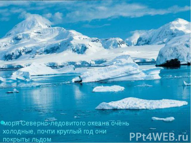 моря Северно-ледовитого океана очень холодные, почти круглый год они покрыты льдом