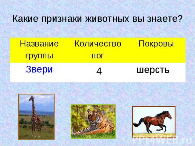 Какие признаки животных вы знаете?