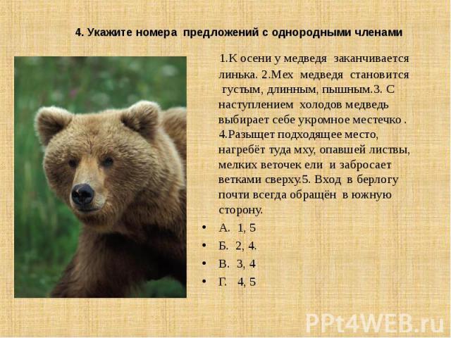 1.К осени у медведя заканчивается линька. 2.Мех медведя становится густым, длинным, пышным.3. С наступлением холодов медведь выбирает себе укромное местечко . 4.Разыщет подходящее место, нагребёт туда мху, опавшей листвы, мелких веточек ели и заброс…