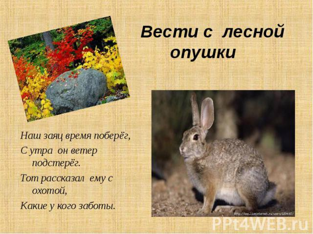 Наш заяц время поберёг, Наш заяц время поберёг, С утра он ветер подстерёг. Тот рассказал ему с охотой, Какие у кого заботы.