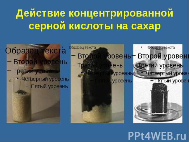 Действие концентрированной серной кислоты на сахар