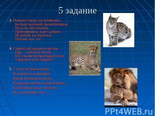 5 задание 3. Меньше тигра, но немножко Больше крупной, рыжей кошки. На суку она