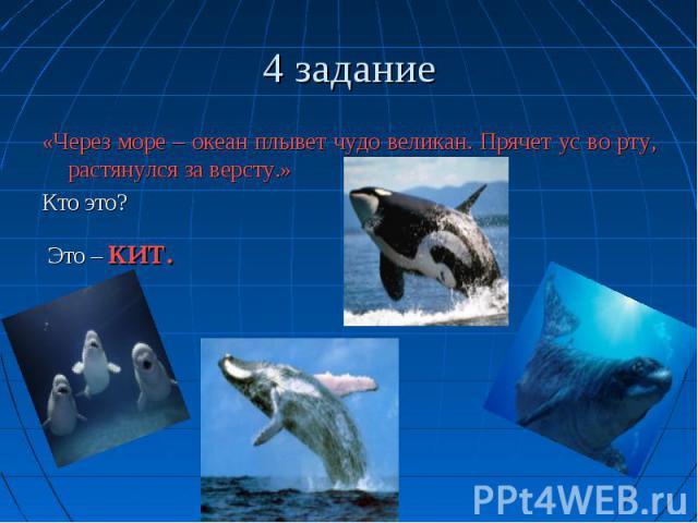 4 задание «Через море – океан плывет чудо великан. Прячет ус во рту, растянулся за версту.» Кто это? Это – кит.