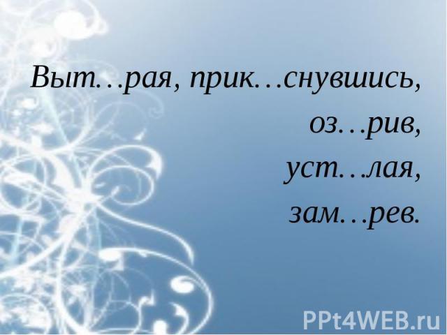 Выт…рая, прик…снувшись, Выт…рая, прик…снувшись, оз…рив, уст…лая, зам…рев.