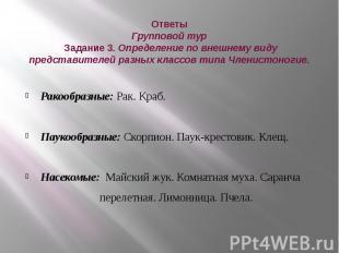 Ответы Групповой тур Задание 3. Определение по внешнему виду представителей разн