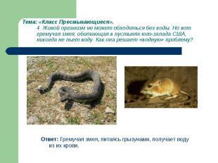 Ответ: Гремучая змея, питаясь грызунами, получает воду из их крови. Ответ: Грему