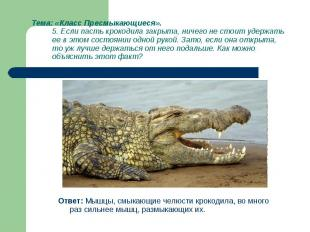 Ответ: Мышцы, смыкающие челюсти крокодила, во много раз сильнее мышц, размыкающи