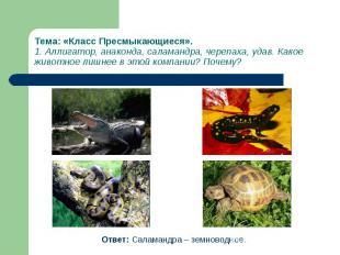 Ответ: Саламандра – земноводное. Ответ: Саламандра – земноводное.