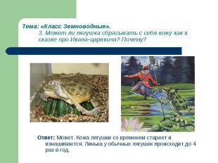 Ответ: Может. Кожа лягушки со временем стареет и изнашивается. Линька у обычных