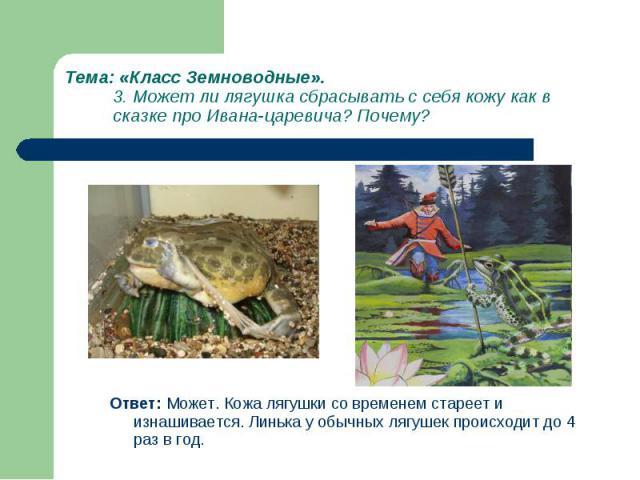 Ответ: Может. Кожа лягушки со временем стареет и изнашивается. Линька у обычных лягушек происходит до 4 раз в год. Ответ: Может. Кожа лягушки со временем стареет и изнашивается. Линька у обычных лягушек происходит до 4 раз в год.
