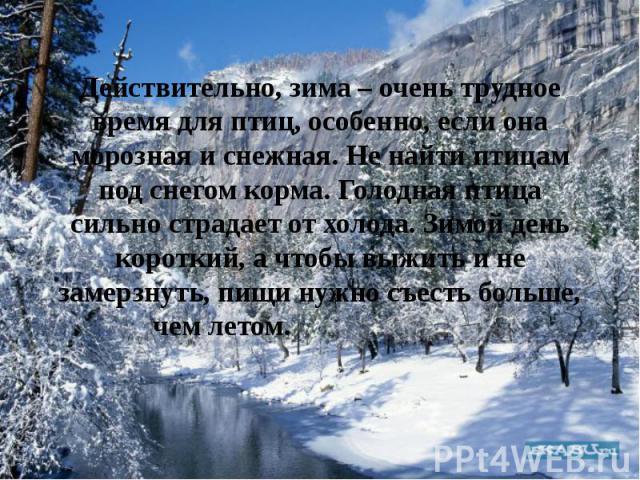 Действительно, зима – очень трудное время для птиц, особенно, если она морозная и снежная. Не найти птицам под снегом корма. Голодная птица сильно страдает от холода. Зимой день короткий, а чтобы выжить и не замерзнуть, пищи нужно съесть больше, чем…