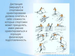 Дистанция (маршрут) в спортивном ориентировании должна сочетать в себе сложности