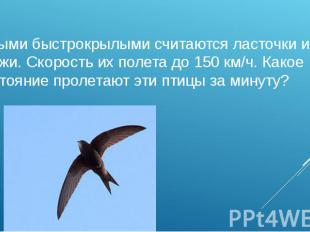 Самыми быстрокрылыми считаются ласточки и стрижи. Скорость их полета до 150 км/ч