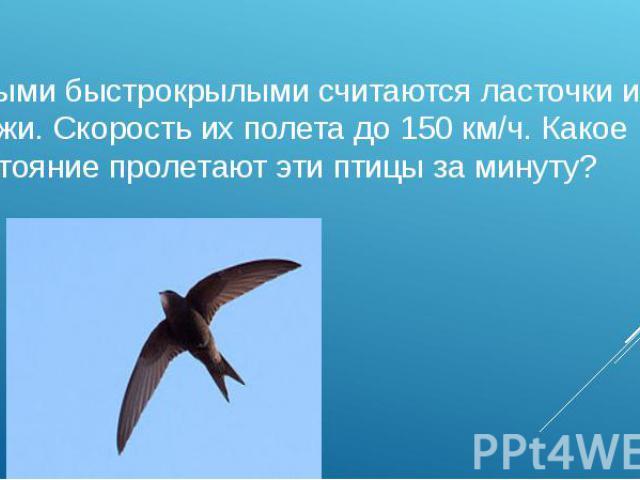 Самыми быстрокрылыми считаются ласточки и стрижи. Скорость их полета до 150 км/ч. Какое расстояние пролетают эти птицы за минуту? (