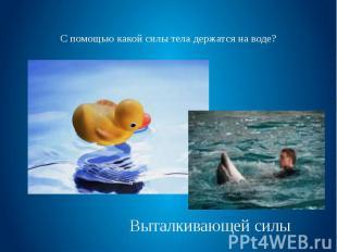 С помощью какой силы тела держатся на воде?
